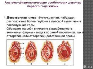 При лишении девственности нет крови