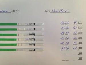 Когда тест покажет беременность?