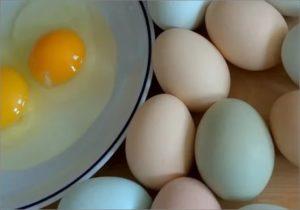 Не могу есть яйца
