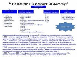Что должно входить в иммунограмму?