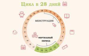 Месячные начались на 17 день цикла
