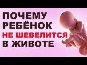 Ребенок не шевелится в животе