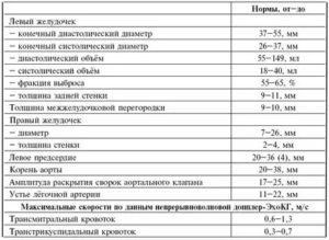 Как расшифровать результаты эхокардиографии?