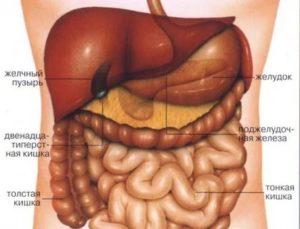 Это с желудком что-то или с кишечником?