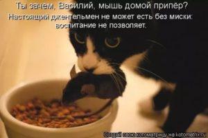 Не могу есть