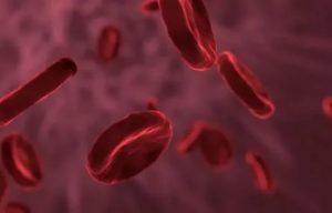 Густая кровь и анемия