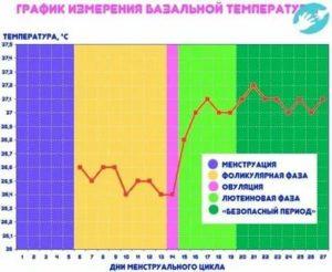 Температура после полового акта