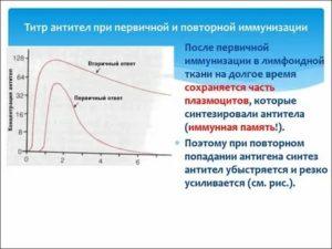 Что значит - титры антител 1:128?