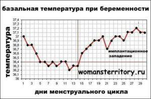 Температура на 38 неделе беременности,  что делать?