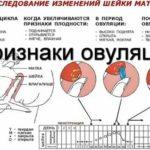 Что такое анализ крови на МФ или МВ?