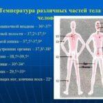 Анализ на лейкотриены