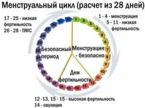 Норма ли цикл 39 дней?