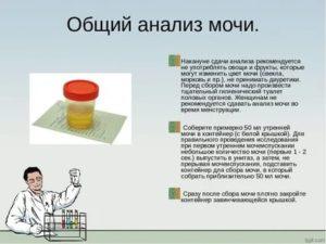 Влияет ли алкоголь на анализ кала?