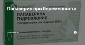 Прием папаверина при беременности и гипотериозе